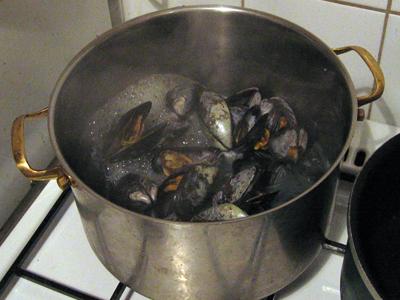 musselkok