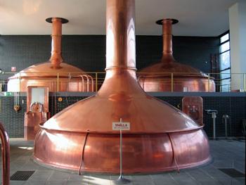 Snygga kopparpannor inne i bryggeriet